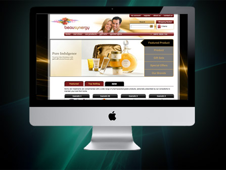 Ecommerce-Website [Click main image to view website]