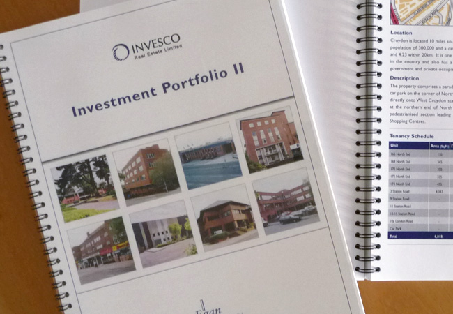 Egan Lawson Property Investment Brochure